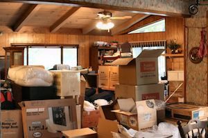 Dumpster Rental Vs. Junk Removal: What's Right For You?